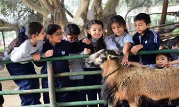 Entradas para niños y adultos + actividades en la Granja Interactiva El Arriero.