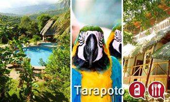 Tarapoto: Alojamiento para dos o tres personas + desayunos en Madera Labrada Lodge