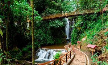 Selva Central: 4D /3N en  Oxapampa–Tarma–La Merced ¡Selvámonos 29/06 al 02/07!
