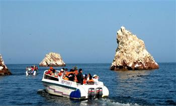 Paracas: 2D/1N + Islas Ballestas
