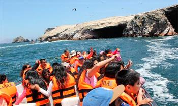 2D/1N en Ica -Paracas - Islas Ballestas y más.