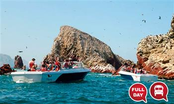 Full Day: Ica + Paracas + Huacachina + Sandbord + tubulares y más