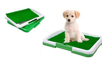 San Miguel: Baño para perro o gato 3 piezas con grass artificial