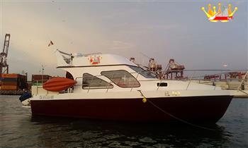 Callao-La Punta: Full day en Yate, nada con lobos marinos en Islas Palomino